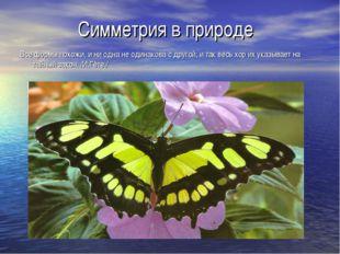 Симметрия в природе Все формы похожи, и ни одна не одинакова с другой; и так