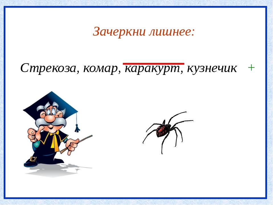 Зачеркни лишнее: Стрекоза, комар, каракурт, кузнечик +