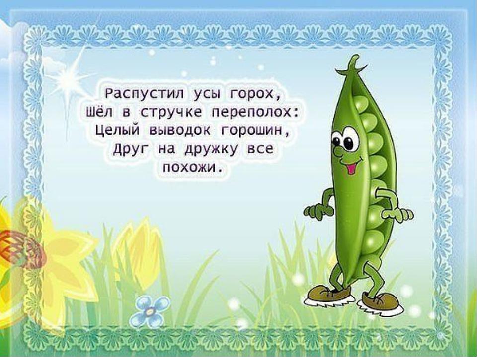 смешные четверостишья про овощи с картинкой фигура выразительное