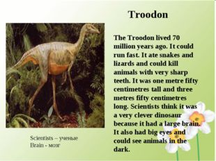 Troodon The Troodon lived 70 million years ago. It could run fast. It ate sn