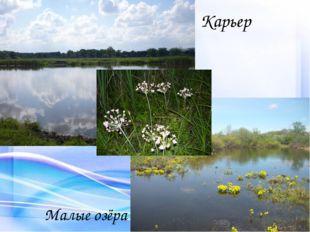 Карьер Малые озёра
