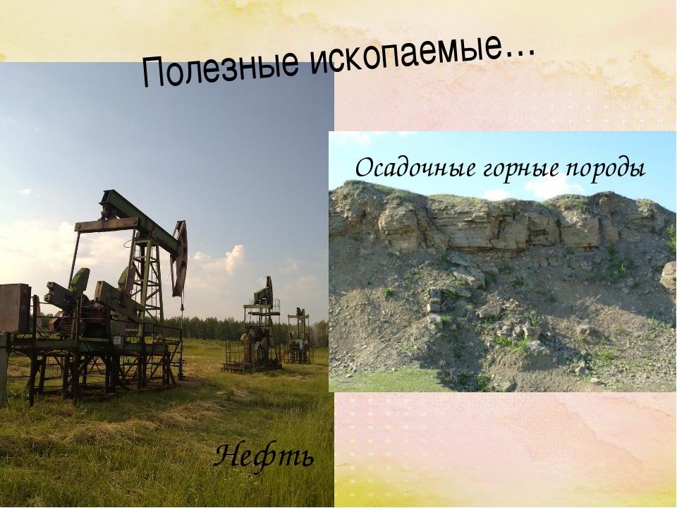 Полезные ископаемые… Нефть Осадочные горные породы