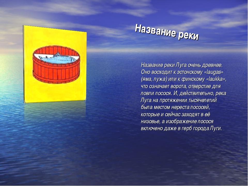 Название реки Название реки Луга очень древнее. Оно восходит к эстонскому «la...