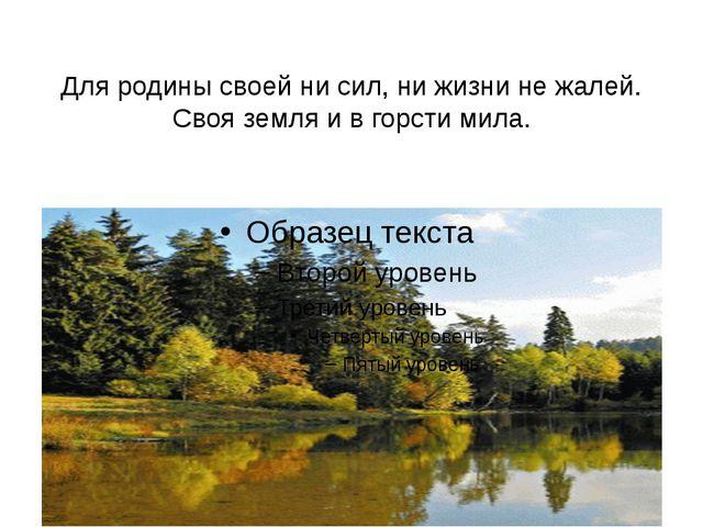 Для родины своей ни сил, ни жизни не жалей. Своя земля и в горсти мила.