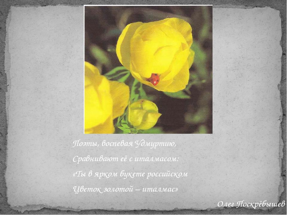 Поэты, воспевая Удмуртию, Сравнивают её с италмасом: «Ты в ярком букете росси...