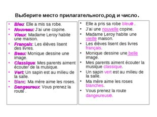 Выберите место прилагательного,род и число. Bleu: Elle a mis sa robe. Nouveau