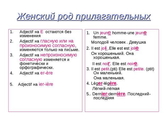 Женский род прилагательных Adjectif на E остаются без изменения Adjectif на г...
