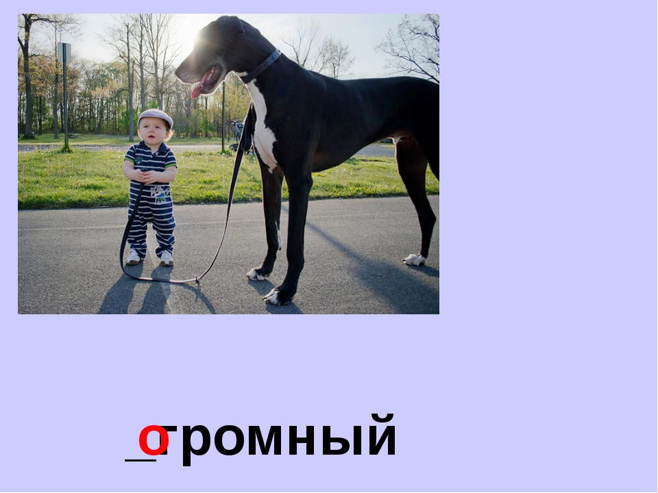 _громный о