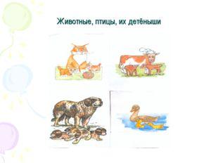 Животные, птицы, их детёныши