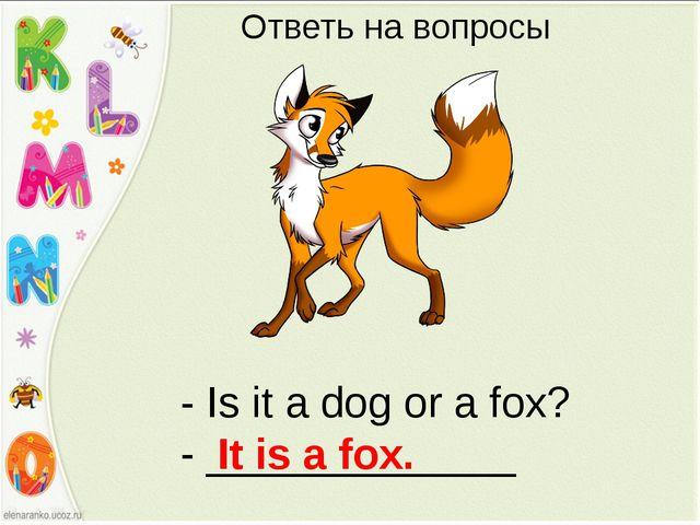 - Is it a dog or a fox? - _____________ It is a fox. Ответь на вопросы