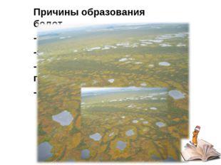 Причины образования болот - зарастание озер -застой воды родников - близкое з