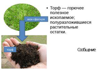 Торф — горючее полезное ископаемое; полуразложившиеся растительные остатки. С