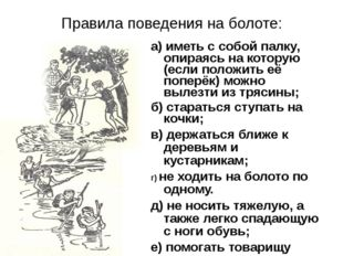 Правила поведения на болоте: а) иметь с собой палку, опираясь на которую (есл