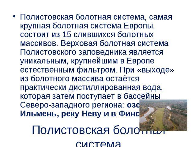 Полистовская болотная система Полистовская болотная система, самая крупная бо...