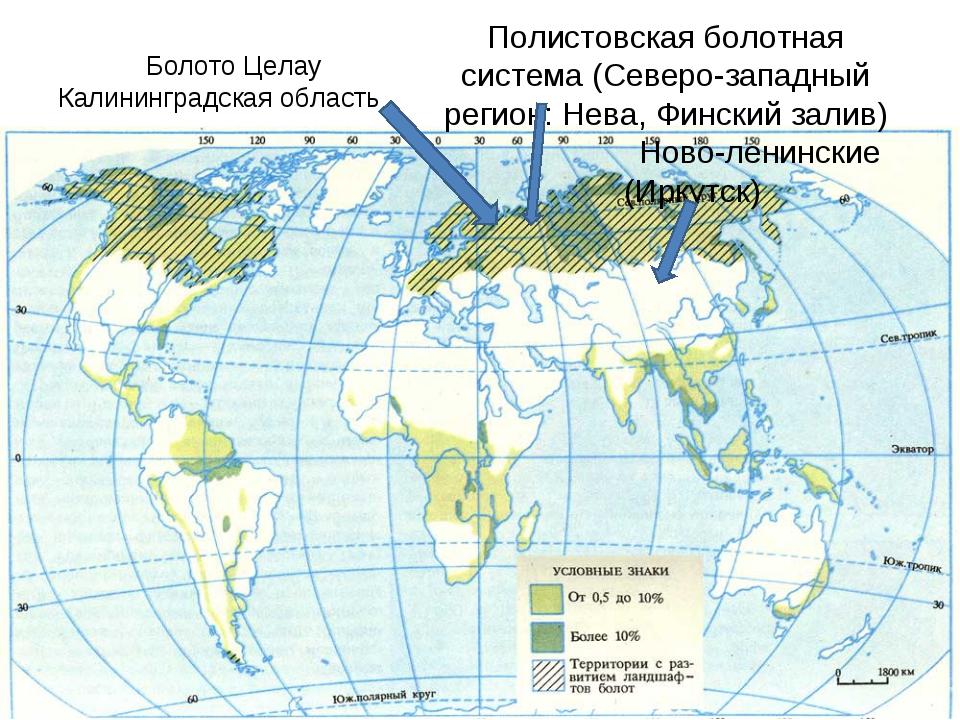 Полистовская болотная система (Северо-западный регион: Нева, Финский залив)...