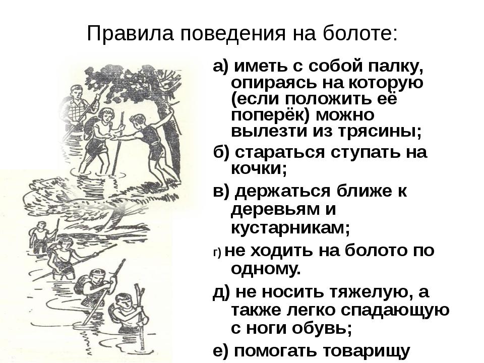 Правила поведения на болоте: а) иметь с собой палку, опираясь на которую (есл...