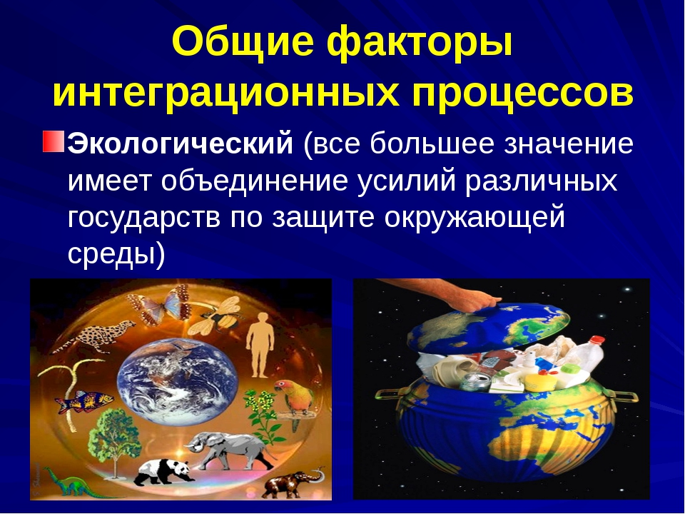Общие факторы интеграционных процессов Экологический (все большее значение им...