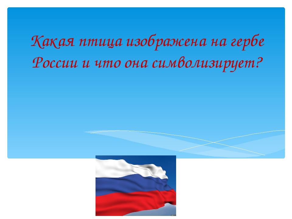 Какая птица изображена на гербе России и что она символизирует?