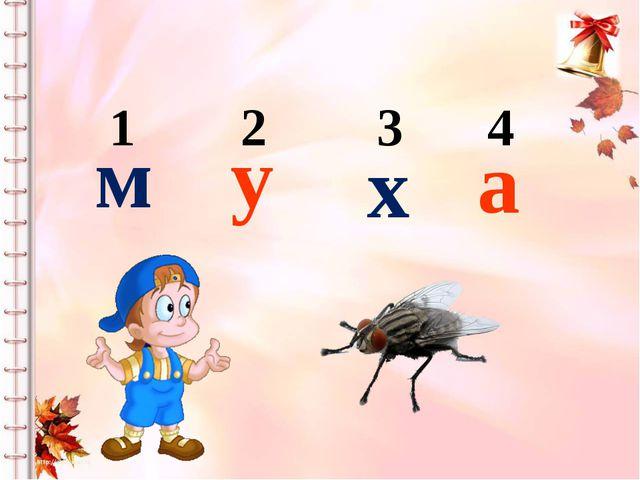 1 2 3 4 м у х а Определение последовательности звуков в слове