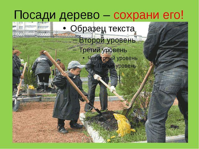 Посади дерево – сохрани его!