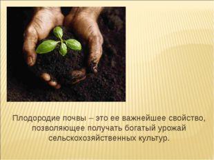 Плодородие почвы – это ее важнейшее свойство, позволяющее получать богатый ур