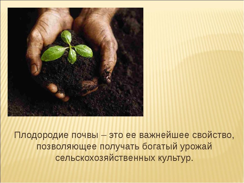 Плодородие почвы – это ее важнейшее свойство, позволяющее получать богатый ур...