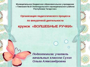 Организация педагогического процесса по внеурочной деятельности кружок «ВОЛШЕ