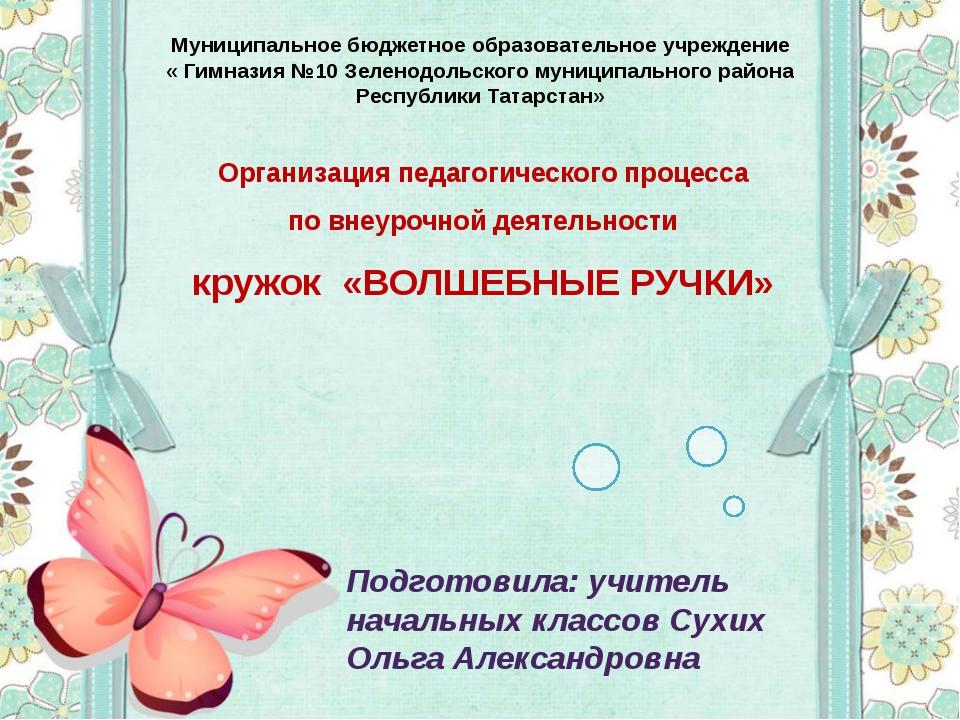 Организация педагогического процесса по внеурочной деятельности кружок «ВОЛШЕ...