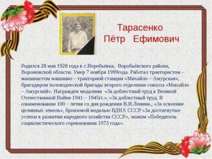 Тарасенко Пётр Ефимович Родился 28 мая 1928 года в с.Воробьёвка, Воробьёвско