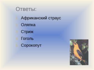 Ответы: Африканский страус Оляпка Стриж Гоголь Сорокопут