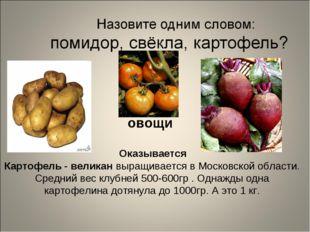 Оказывается Картофель - великан выращивается в Московской области. Средний в
