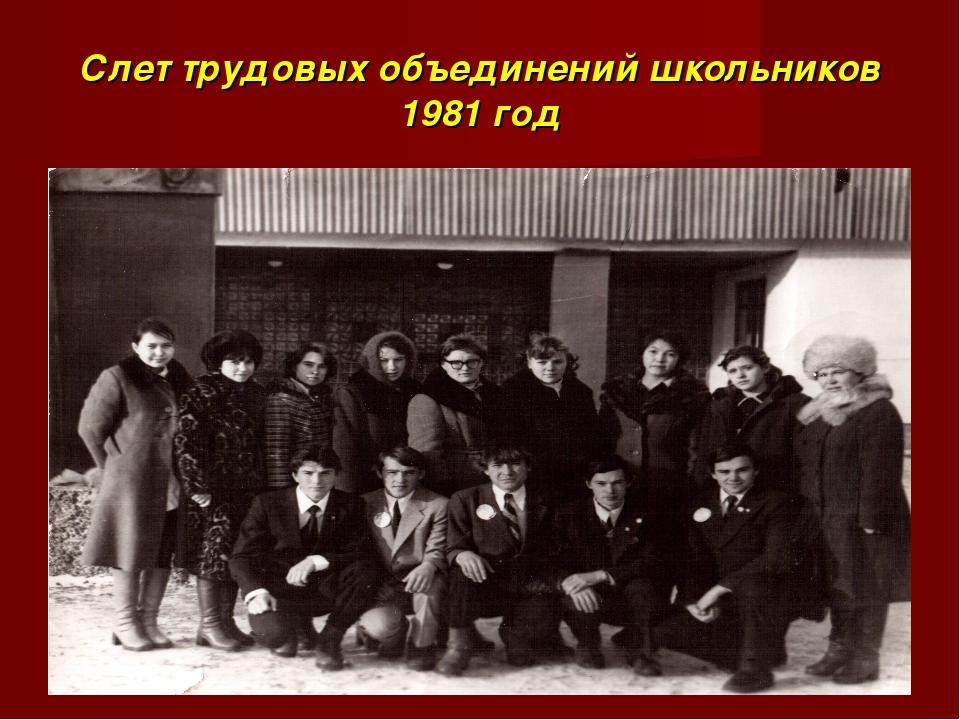 Слет трудовых объединений школьников 1981 год