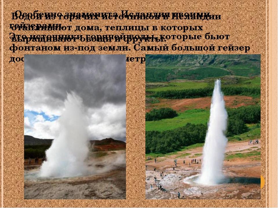 Особенно знаменита Исландия своими гейзерами. Это источники горячей воды, ко...