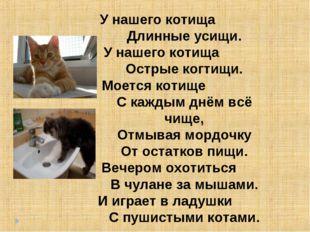 У нашего котища   Длинные усищи. У нашего котища  Остр