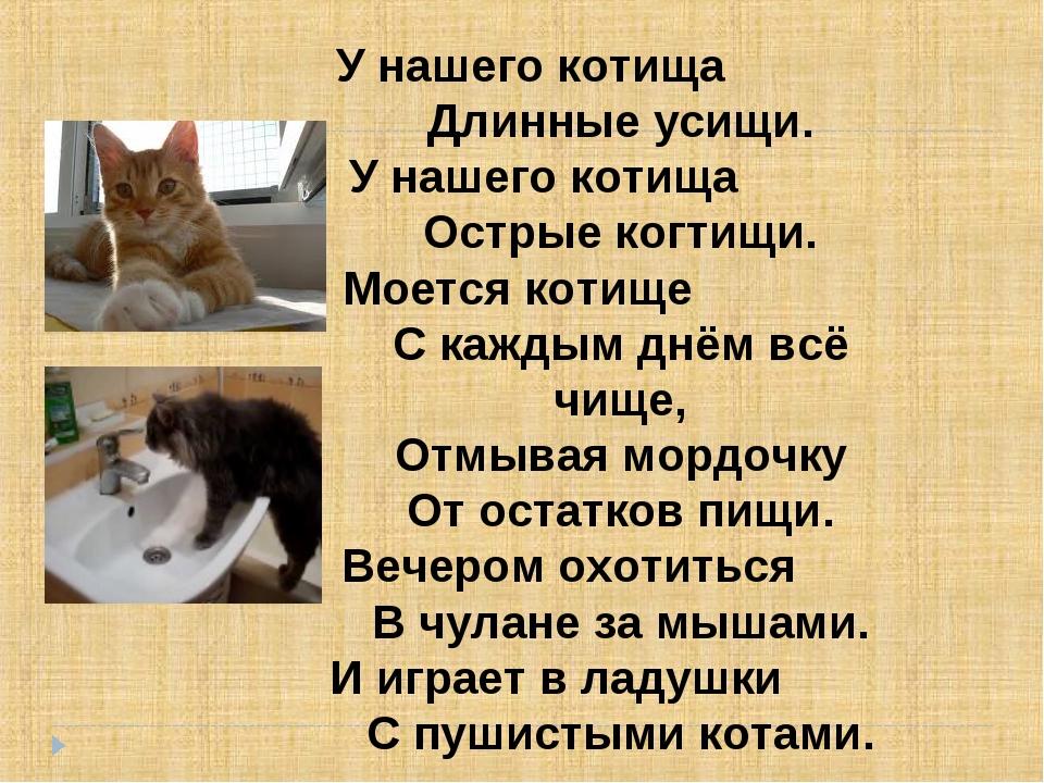 У нашего котища   Длинные усищи. У нашего котища  Остр...