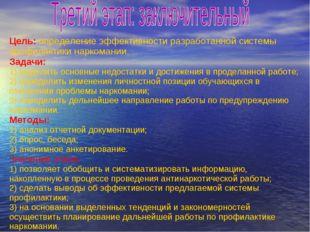 Цель: определение эффективности разработанной системы профилактики наркомании