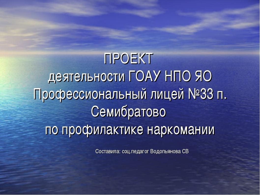 ПРОЕКТ деятельности ГОАУ НПО ЯО Профессиональный лицей №33 п. Семибратово по...