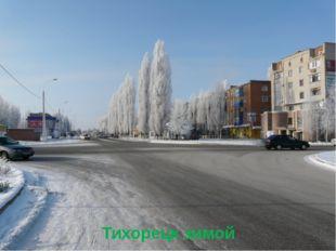 Тихорецк зимой