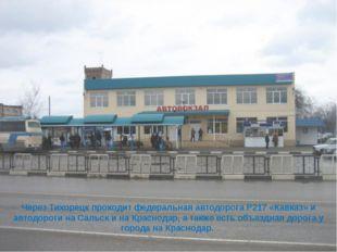 Через Тихорецк проходит федеральная автодорогаР217«Кавказ» и автодороги на