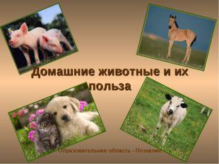 Домашние животные и их польза Образовательная область - Познание