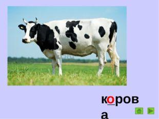 к_рова о
