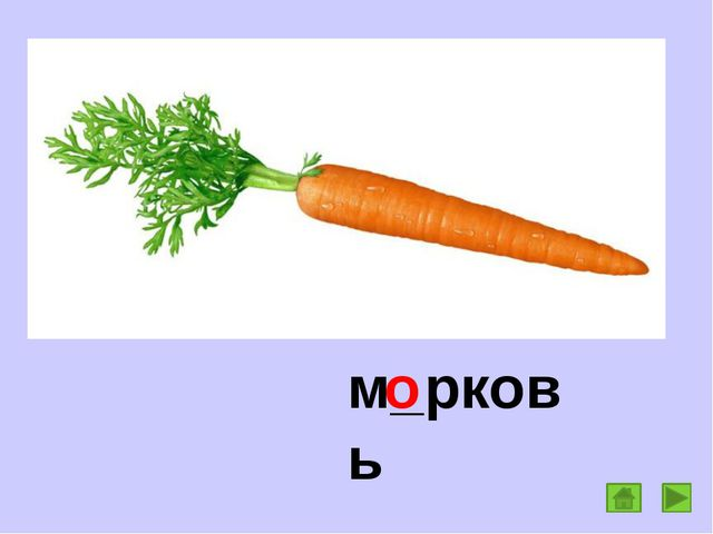 м_рковь о