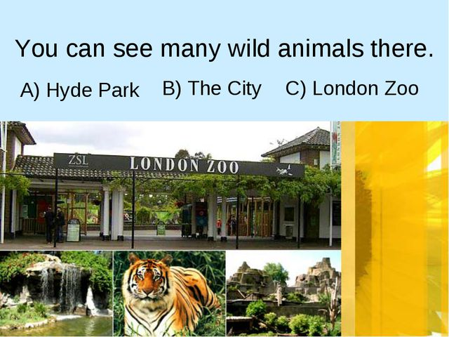 A) Hyde Park You can see many wild animals there. C) London Zoo B) The City