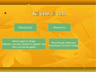 Көбею тәсілі Жыныссыз Жынысты Митоз ядро бөлінеді Кейінен ұзыннан немесе көл