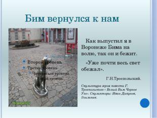 Бим вернулся к нам Как выпустил я в Воронеже Бима на волю, так он и бежит. «У