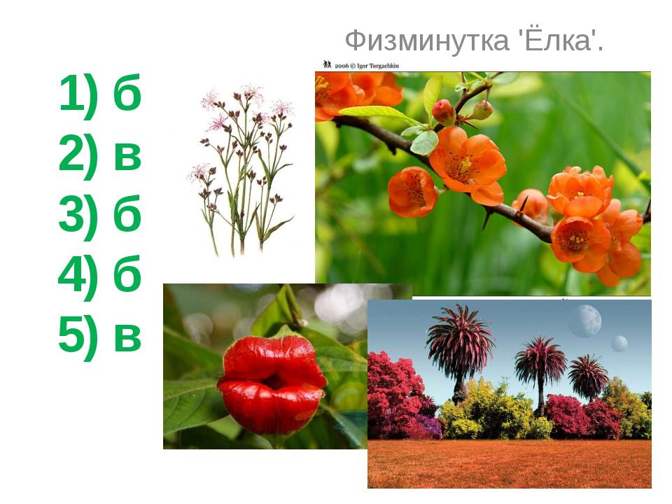 1) б 2) в 3) б 4) б 5) в Физминутка 'Ёлка'.