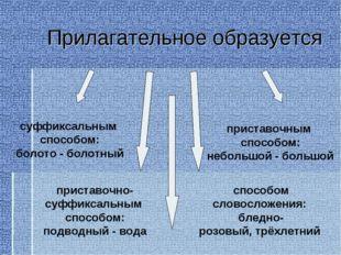 Прилагательное образуется суффиксальным способом: болото- болотный приставо