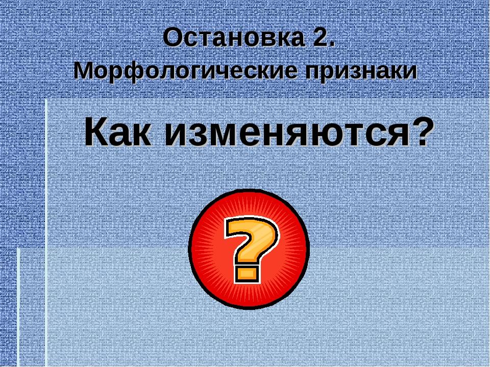 Остановка 2. Морфологические признаки Как изменяются?