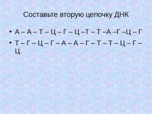 Составьте вторую цепочку ДНК А – А – Т – Ц – Г – Ц –Т – Т –А –Г –Ц – Г Т – Г