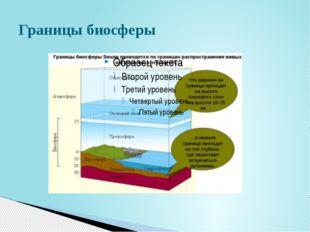 Состав атмосферы: азот – 78%, кислород – 21% Углекислый газ, водные пары, арг